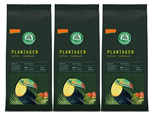 Lebensbaum Plantagen Kaffee, gemahlen,...