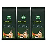 Lebensbaum Bohnenkaffee, Äthiopien Yirgacheffe, ganze Bohne, Bio, 3 x 250g