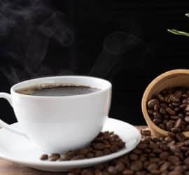 Geisha Kaffee – die vielleicht beste Kaffeesorte der Welt